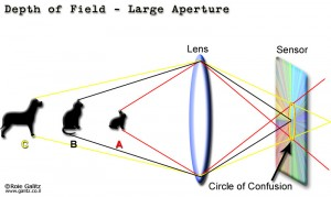 Circle of Confusion and Depth of Field in Stereoscopic 3D (image copyright burned in image)